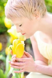 tulips-635263_1280